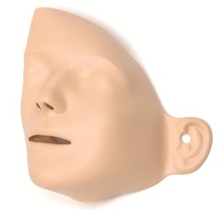 Adult Manikin Faces (pack of 6)