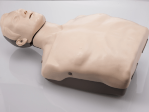 Brayden CPR Manikin (Base Model - no illumination)